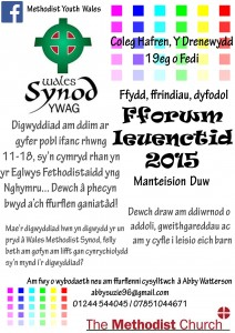 Youth Forum 2015 welsh new
