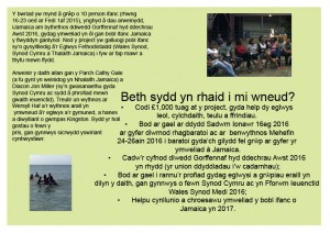 Youth Exchange Leaflet 2 Welsh copy
